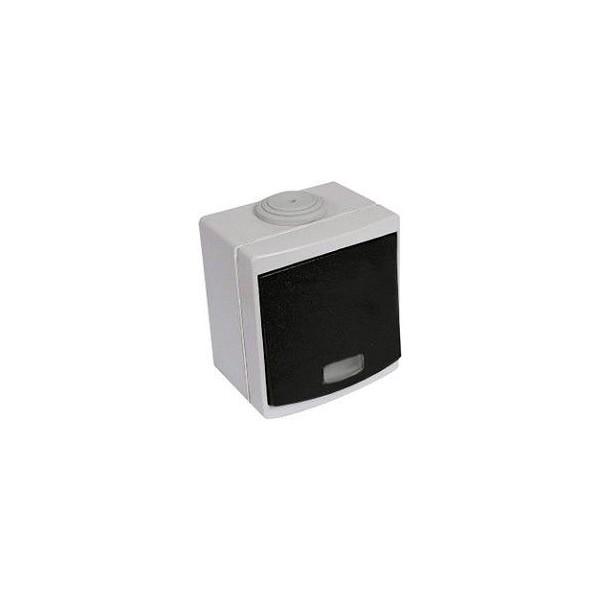 Bouton poussoir lumineux étanche gris IP55 Ouessant Réf: 60716
